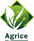 Agrice Website